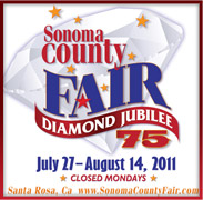 soco fair poster