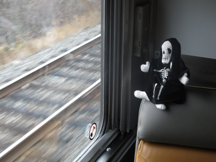Death_CanadianTrain_2010